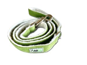 Hemp Asatre Green Leash